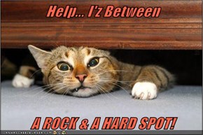 Help... I'z Between  A ROCK & A HARD SPOT!