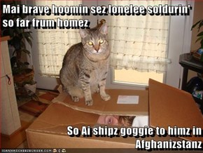 Mai brave hoomin sez lonelee soldurin' so far frum homez  So Ai shipz goggie to himz in Afghanizstanz