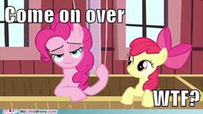 Learn the ways, applebloom