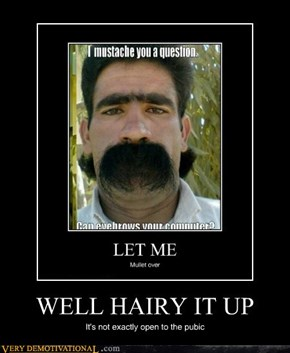 WELL HAIRY IT UP