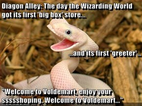 "Diagon Alley: The day the Wizarding World got its first 'big box' store... ...and its first 'greeter'... ""Welcome to Voldemart, enjoy your ssssshoping. Welcome to Voldemart..."""