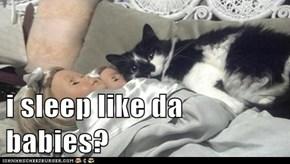 i sleep like da babies?