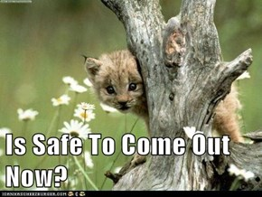 Is Safe To Come Out Now?