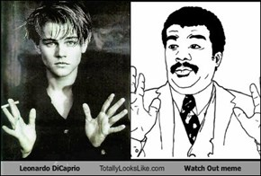 Leonardo DiCaprio Totally Looks Like Watch Out meme