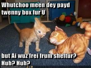 Whutchoo meen dey payd twenny box fur U  but Ai wuz frei frum sheltur? Huh? Huh?