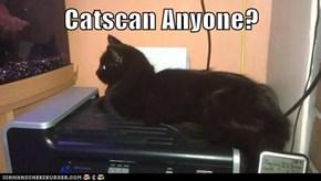 Catscan Anyone?
