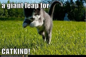 a giant leap for  CATKIND!