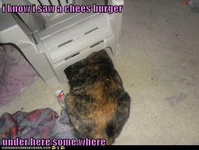 i know i saw a chees burger  under here some where