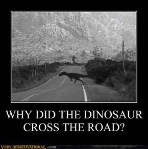 WHY DID THE DINOSAUR CROSS THE ROAD?
