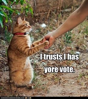 I trusts I has