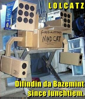 L O L C A T Z  Difindin da Bazemint since lunchtiem.
