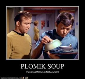 PLOMIK SOUP