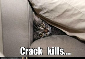 Crack   kills....