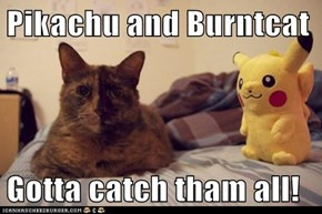 Pikachu and Burntcat  Gotta catch tham all!