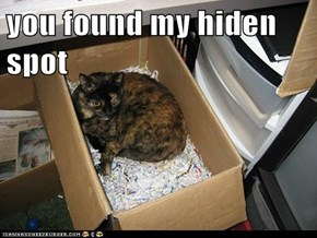 you found my hiden spot