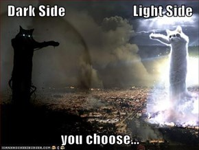 Dark Side                        Light Side  you choose...