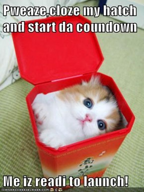Pweaze,cloze my hatch and start da coundown  Me iz readi to launch!