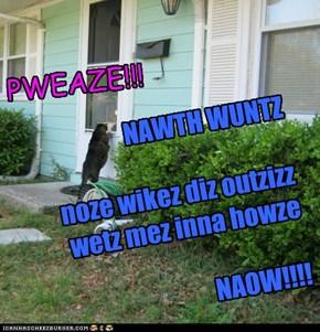 PWEAZE!!!