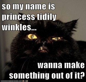so my name is princess tidily winkles...  wanna make something out of it?