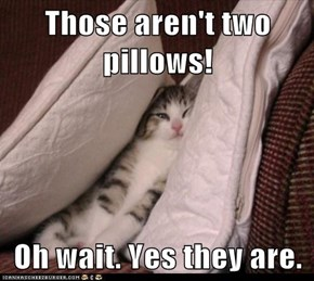 Those aren't two pillows!  Oh wait. Yes they are.