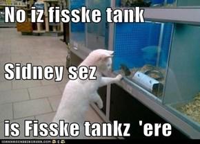 No iz fisske tank Sidney sez is Fisske tankz  'ere