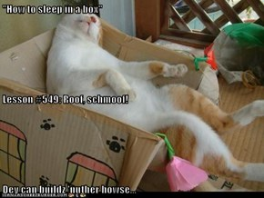 """How to sleep in a box"" Lesson #549: Roof, schmoof! Dey can buildz 'nuther howse..."