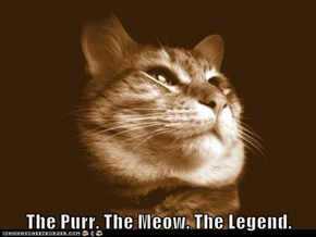 The Purr. The Meow. The Legend.