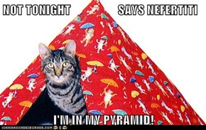 NOT TONIGHT                   SAYS NEFERTITI  I'M IN MY PYRAMID!