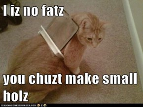 I iz no fatz  you chuzt make small holz