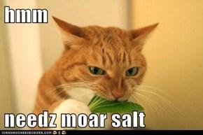 hmm  needz moar salt