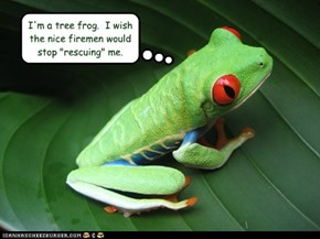 "I'm a tree frog.  I wish the nice firemen would stop ""rescuing"" me."
