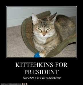 KITTEHKINS FOR PRESIDENT