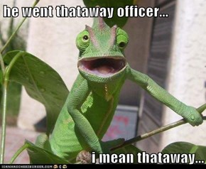 he went thataway officer...  i mean thataway...