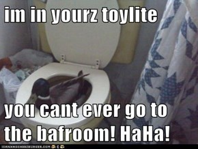 im in yourz toylite   you cant ever go to the bafroom! HaHa!