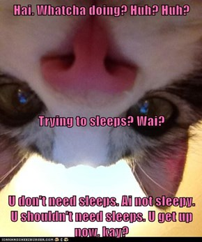 Hai. Whatcha doing? Huh? Huh? Trying to sleeps? Wai? U don't need sleeps. Ai not sleepy.   U shouldn't need sleeps. U get up now, kay?