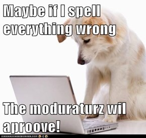 Maybe if I spell everything wrong  The moduraturz wil aproove!