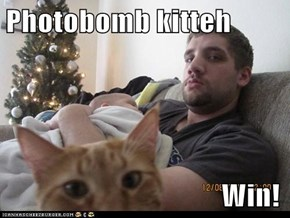 Photobomb kitteh                                       Win!