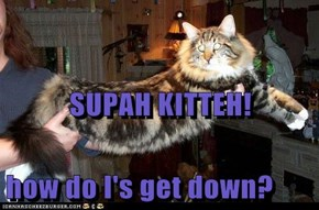 SUPAH KITTEH! how do I's get down?