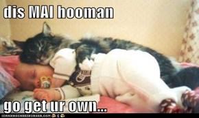 dis MAI hooman  go get ur own...