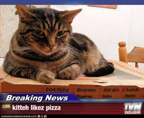 Breaking News - kitteh likez pizza