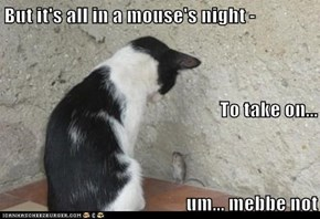 But it's all in a mouse's night - To take on... um... mebbe not