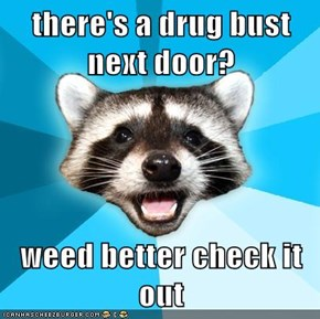 there's a drug bust next door?  weed better check it out