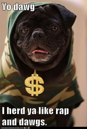 Yo dawg  I herd ya like rap and dawgs.