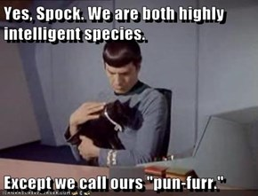 "Yes, Spock. We are both highly intelligent species.   Except we call ours ""pun-furr."""