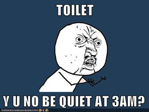 TOILET  Y U NO BE QUIET AT 3AM?