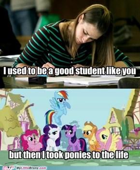 Ponies > School