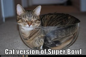 Cat version of Super Bowl