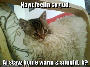 Nawt feelin so gud.   Ai stayz home warm & snugld,  k?