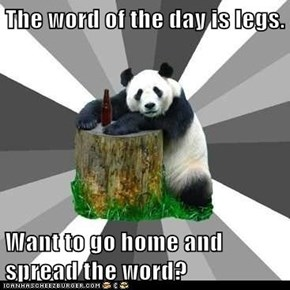 The word of the day is legs.  Want to go home and spread the word?