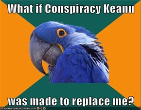 Paranoid Parrot: It Was